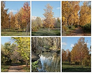 Autumn Collage Stock Images - Image: 22132314