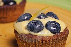 Bilberry Cake Stock Image - Image: 22134351