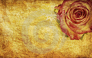 Textured Rose Royalty Free Stock Image - Image: 22159306