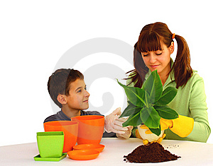 Planting A Flower Royalty Free Stock Images - Image: 22188169