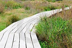 Wood Plank Road Royalty Free Stock Image - Image: 22199676