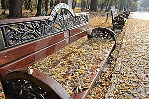 Herbst Stockfotografie - Bild: 22215822
