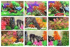 Aquarium Collage Stock Images - Image: 22245294