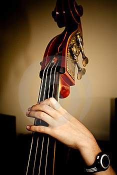 Contrabass Stock Images - Image: 22258514
