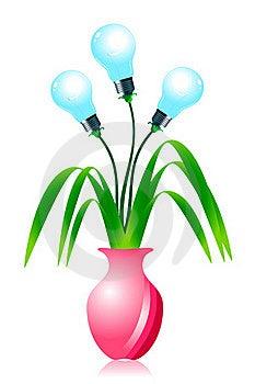 Growing Energy Light Bulbs. Stock Photo - Image: 22271960