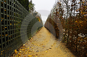 Footpath In Autumn Stock Photography - Image: 22274622