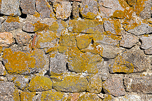 Stone And Moss Background Royalty Free Stock Image - Image: 22287626