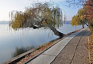 Still Lake Royalty Free Stock Images - Image: 22294769