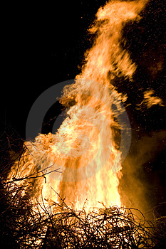 Flame Detail Stock Images - Image: 2231394