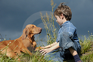 Young Boy Talking To His Dog Stock Image