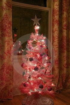 Small Girls Christmas Tree Royalty Free Stock Image - Image: 22307986