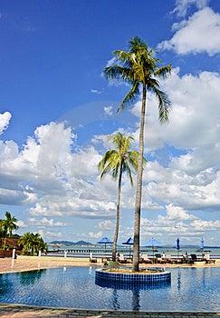 Tropical Swimming Pool Stock Photos - Image: 22309983