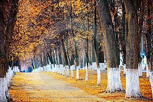 Autumn Park Stock Photo - Image: 22317590