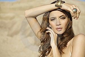 Portrait Brunette Royalty Free Stock Photography - Image: 22356917