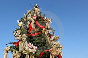 Arbre De Noël Image libre de droits - Image: 22363706