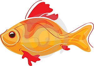 Golden Fish Royalty Free Stock Image - Image: 22385146