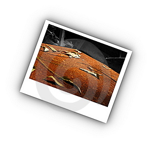 Old And Abandoned Royalty Free Stock Images - Image: 22393579