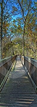 Boardwalk To Nowhere Royalty Free Stock Photos - Image: 22433498