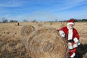 Reindeer Food Stock Photography - Image: 22448472
