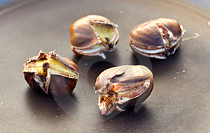 Chest Nuts  Stock Photos - Image: 22488663