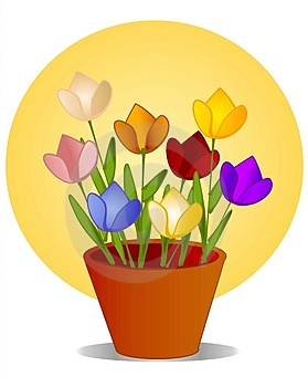 Tulips In Flower Pot With Sun Royalty Free Stock Photo - Image: 2257955