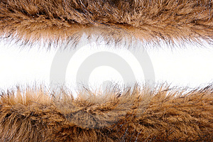 Fluffy Wool Texture Stock Photos - Image: 22528093