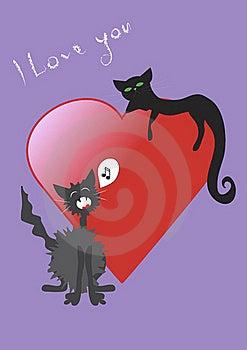 Love Cat Royalty Free Stock Photo - Image: 22558285