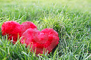 Two Hearts Royalty Free Stock Images - Image: 22572619
