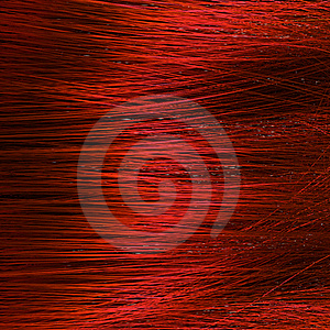 Hair Macro Stock Photography - Image: 22584282