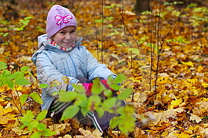 Girls Kid Smiling In Autumn Leaves Background Stock Image - Image: 22628371