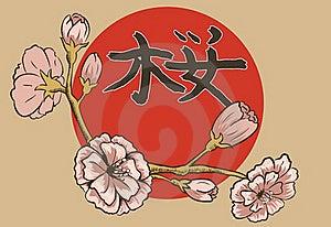 Illustration Of Flowering Branch Of Sakura. Stock Photos - Image: 22660733