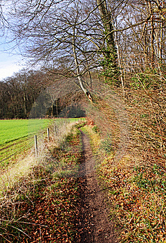 Footpath Between Field And Woodland Royalty Free Stock Image - Image: 22719676