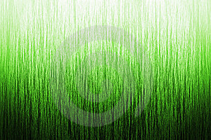 Background Grass Stock Image - Image: 22758971