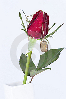 Gold Pendant With Diamond And Red Rose Stock Images - Image: 22816254