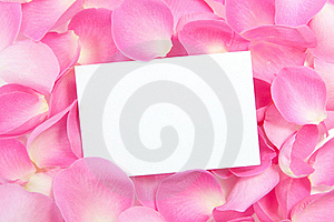 Blank Card With Roses Royalty Free Stock Photo - Image: 22858425
