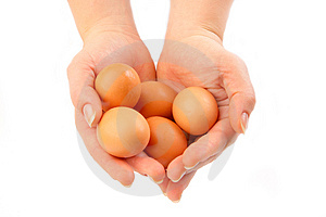 Eggs In Hands Royalty Free Stock Photos - Image: 2291148