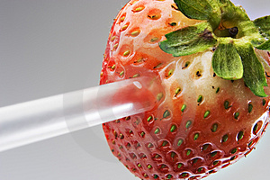 Strawberry Straw Royalty Free Stock Photos - Image: 2295858