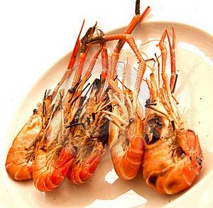 Grilled Shrimp Royalty Free Stock Image - Image: 22922296