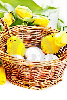 Chicks In Basket Royalty Free Stock Photo - Image: 22928715