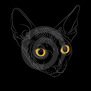 Vector Sketch The Cat Breed Sphynx Royalty Free Stock Photos - Image: 22998258