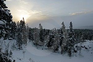 Snowy Sunrise Stock Images