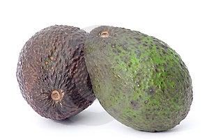 Avocados Free Stock Photos