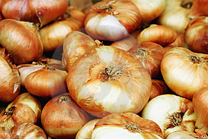Bunch Of Onions Free Stock Photography