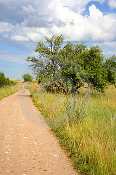 Old Country Road Free Stock Photo