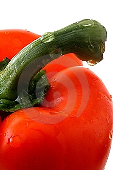 Pepper And Stem Royalty Free Stock Photo