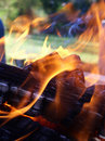 Flames entwining around wood Stock Images