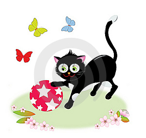 Cat Playing With A Ball Royalty Free Stock Image - Image: 23002546