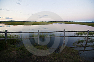 Marsh Royalty Free Stock Photography - Image: 23029677