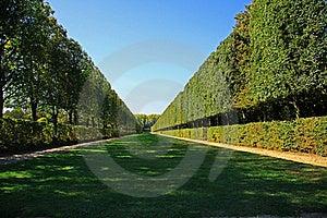 Green Path Royalty Free Stock Photo - Image: 23034225