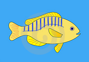 Yellow Fish With Blue And Red Stripes Stock Images - Image: 23035334